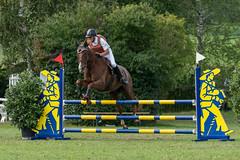 A9903649_s (AndiP66) Tags: springen derby aesch bl baselland 2017 juni june 13august2017 pferd horse schweiz switzerland kantonbaselland cantonofbaselland concours wettbewerb horsejumping springreiten pferdespringen equestrian sports pferdesport sport sony alpha sonyalpha 99markii 99ii 99m2 a99ii ilca99m2 slta99ii sony70400mm f456 sony70400mmf456gssmii sal70400g2 amount andreaspeters