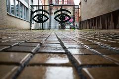 I see you (explore 2017-09-10) (Maria Eklind) Tags: kullerstenar gatsten fotosondag malmö malmöchokladfabrik port sweden outdoor rain fs170910 mazetti skånelän sverige se gate gateway grind