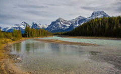 Athabaska River, Mount Fryatt, Brussels Peak (martincarlisle) Tags: athabaskariver mountfryatt brusselspeak jaspernationalpark alberta canada canadianrockies rockymountains rockies nationalparks mountainparks parks icefieldshighway rivers rocks riverbank trees mountains sky clouds scenery canon450dxsi tamronlenses captureonepro9 niksoftware colourefex greatphotographers nwn