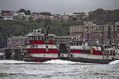 r_170903287_beat0053_a (Mitch Waxman) Tags: 2017greatnorthrivertugboatrace 42ndstreet buchanan donjon fireboatjohnjharvey hudsonriver midtown millerslaunch mistert newyorkcity newyorkharbor tugboat workingharborcommittee newyork