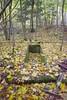 DSC_3528 (PorkkalanParenteesi/YouTube) Tags: hylätty abandoned porkkalanparenteesi porkkala exploring kirkkonummi soviet suomi finland landscape outdoors