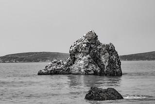 Bodega Seascape