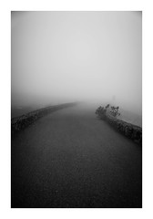(Miss Nonsenses) Tags: fog blackandwhite blancoynegro road nobody less