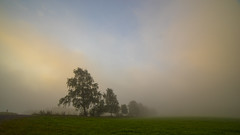 Der erste Herbstnebel (uschmidt2283) Tags: geba hdr landschaften licht nebel thüringen