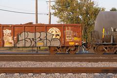 Steel (Psychedelic Wardad) Tags: freight graffiti msk dirty30 d30 steel