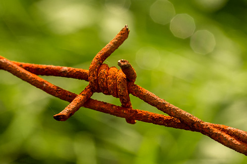 Macro Mondays | Rust