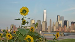 norland d. cruz photography: we remember (september 11, 2017) (norlandcruz74) Tags: tribute remembrance newyork ny manhattan norland cruz d pinoy filipino filam september 11 2017 we remember wtc world trade center freedom tower one liberty state park nj new jersey city us usa america nikon dx d5100 911 11th