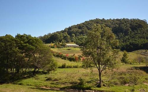 184 Barrabaroo Road, Cobargo NSW