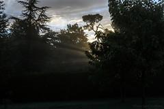 Matin brumeux_5076 (Luc Barré) Tags: matin brume levée soleil france landes losse extérieur exterior
