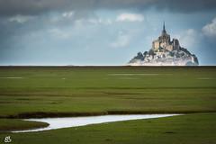 Mont-Saint-Michel (emmanuelbernard1) Tags: france montstmichel paysage landscape prairie présalé meadow presalted ruby3
