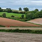Devon Landscape thumbnail