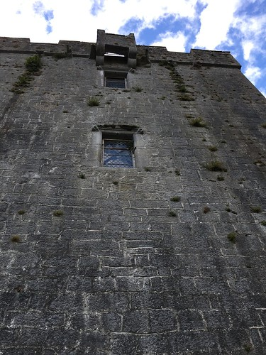 Dunguaire Castle (56)