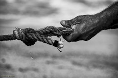 DSC_2392 s (ahcravo gorim) Tags: xávega leirosa mãos meninas ahcravo gorim