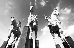Brussels (JOAO DE BARROS) Tags: joão barros monochrome sculpture brussels belgium