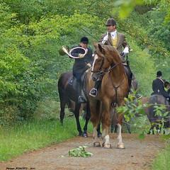 Veneurs (Phil du Valois) Tags: veneur venerie chasse forêt domaniale compiègne courre cheval trompe