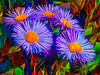 Dali Daisies (Steve Taylor (Photography)) Tags: art digital green red mauve purple brown colourful vivid uk gb england greatbritain unitedkingdom london flower daisy abstract