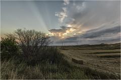 Preludio de tormenta (Fernando Forniés Gracia) Tags: españa aragón zaragoza leciñena tormenta nubes campo naturaleza paisaje atardecer ocaso puestadesol landscape