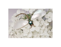 DRAGONFLY -HMM (Ageeth van Geest) Tags: jewelery macro macromondays mm high key hortensia dragonfly libelle hydrangea white mondays