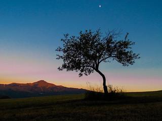 Moon Salutation - Italian Apennines