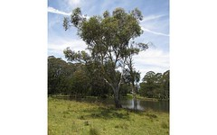 9807 Thunderbolts Way, Nowendoc NSW