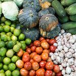 Vegetable tri-color thumbnail