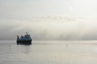 Through Mist
