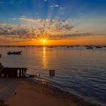 L'heure dorée sur les rives du bassin d'Arcachon (4) thumbnail