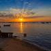 L'heure dorée sur les rives du bassin d'Arcachon (4)