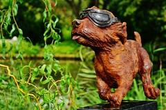 Airheart (stavioni) Tags: airheart dog sculpture trail goggles iron resin