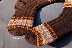 2017-08-04 Kanteletar (10) (hepsi2) Tags: tds2017 tds2017kanteletar kanteletar socks sukat colorwork strandedknitting