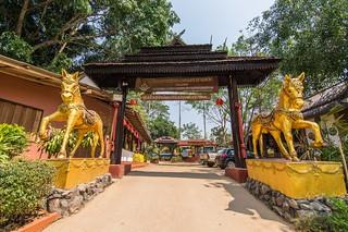 mae fah luang - thailande 43