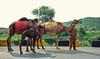 It's hard to earn. (raheelsufi) Tags: life people faces adventure nature hiking road trip khanpur pakistan kpk