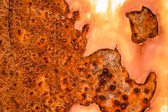 rust (Marc McDermott) Tags: rust metal paint corrosion iron oxide macro macromondays peeling abstract