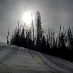 Fremont - Upcoming Sun (Explored 12 aug 2017, #349) thumbnail