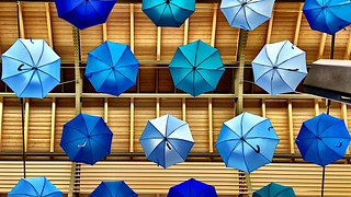My umbrella and the rain