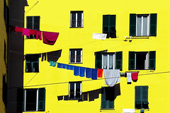 Genova di canarino, persiana verde, zecchino (meghimeg) Tags: 2017 genova facciata facade persiana panni clothes bucato blind laundry sole sun ombra shadow colori colours caproni litania giallo yellow jaune