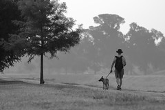 Dogs' Lives are Too Short (jan buchholtz) Tags: brays bayou houston texas dog walking man janbuchholtz monochrome