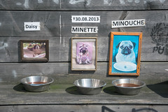 A feeding area for dogs outside a fun Mopse Bar in Berlin, Germany (wuestenigel) Tags: dogs germany pug fun berlin original feeding mopsebar noperson keineperson family familie food lebensmittel cooking kochen table tabelle modern old alt stove herd wall mauer equipment ausrüstung business geschäft restaurant travel reise architecture diearchitektur pan pfanne desktop dirty dreckig design entwurf service bedienung inside innen