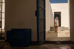 vacanze sarde_-53 (Trittonando) Tags: asinara sardegna sardinha asinello bianco carcere
