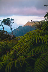 Na Pali Coast (Melissa Emmons Photography) Tags: kau kauai hawaii luckywelivehawaii napali landscape canon canon5d nature neverstopexploring greatnature outdoors rei1440 getoutside explore adventure hiking camping bikini beach coastal island paradise dreamy