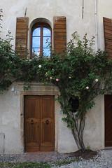 Feltre (pesce_d_aprile) Tags: feltre belluno provinciadibelluno veneto italia italy summer flowers fiori pianterampicanti centrostorico