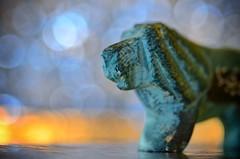 Macro Mondays - Zodiac (Lion) #Explored 29-9-2017 (frankvanroon) Tags: macromondays zodiac lion mm hmm macro 105mm bokeh inexplore