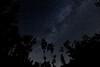 Stars [Explored] (Strocchi) Tags: sky cielo stelle stars night notte longexposure canon eos6d sigma 20mm f14 tripod cavalletto explored