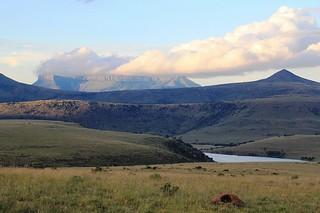 South Africa Hunting Safari - Eastern Cape 39