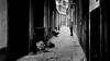 Making Plans (Sean Batten) Tags: london england unitedkingdom gb blackandwhite bw people candid streetphotography street soho nikon df 58mm alley pavement