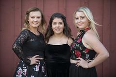 Lakewood High School 2017 Homecoming (afphotowolf) Tags: lakewood colorado