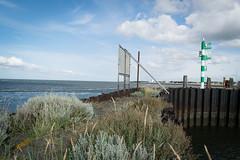 Urlaub IJsselmeer - Lauwersoog-3