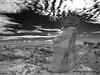 Bisti Badlands-44 (jamesclinich) Tags: bisti badlands danazin wilderness farmington newmexico nm rock desert hoodoo sky clouds landscape availablelight handheld jamesclinich olympus omd em10 mzuiko1240mmf28pro adobe photoshop topaz denoise detail