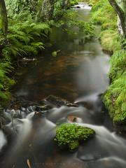 Río Xunco (Ahio) Tags: river stream landscape green pentax summer galicia flow longexposure pool slow