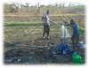 2017 watering off-season vegetables with treadle pump 1 (Foods Resource Bank) Tags: frb world renew humanitarian charity food security water conservation agriculture farmers vegetables crops maize raised bed garden mulching soil improvement cassave income protein animals disaster risk reduction drought flooding community training small business bricks